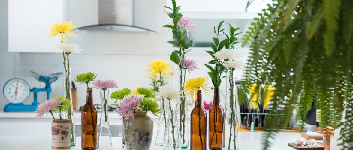 15 nippi väikese köögi planeerimiseks