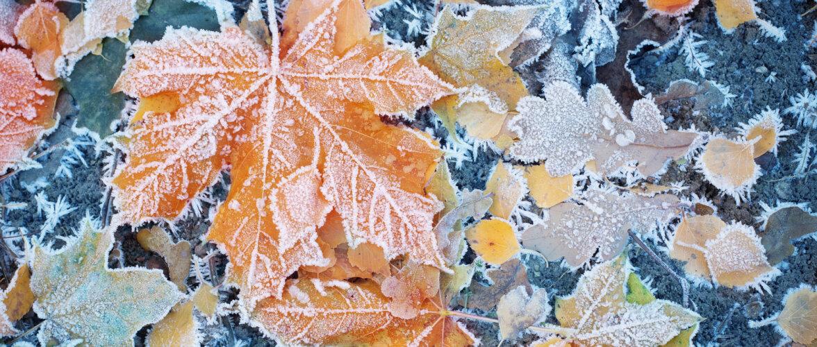 KÜLMAD TULEKUL | 6 võimalust veesüsteeme külmakahjude eest kaitsta