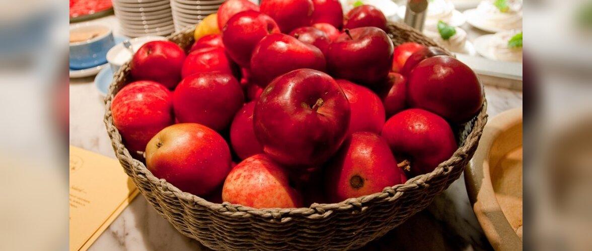 Õunad Anni juures