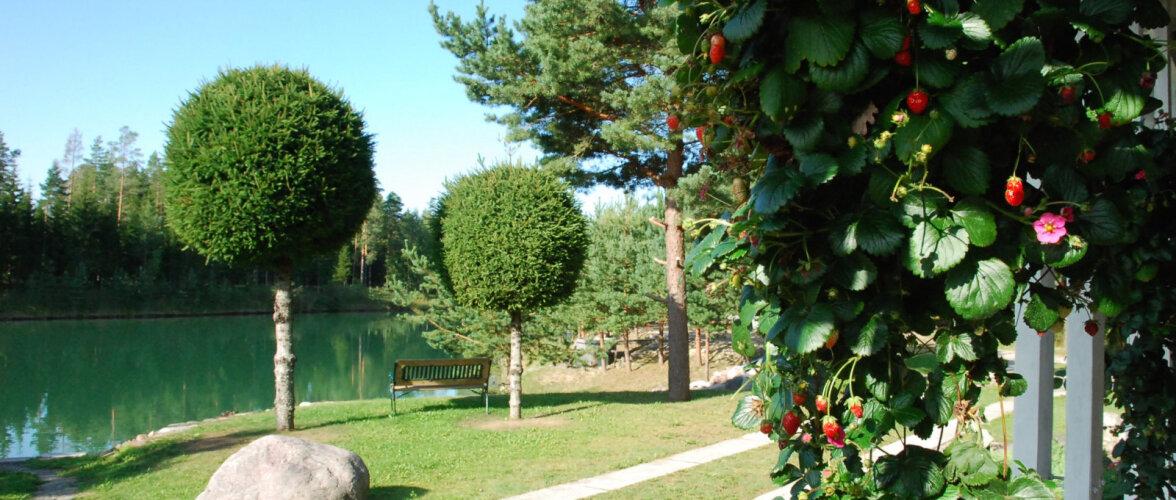 Maapealne paradiis Pärnumaal võlub oma järve, parvesauna ja vesiroosidega