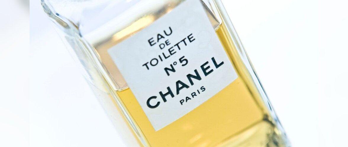 """Запах забытой войны: Chanel No 5 и """"Остров смерти"""" в Белом море"""