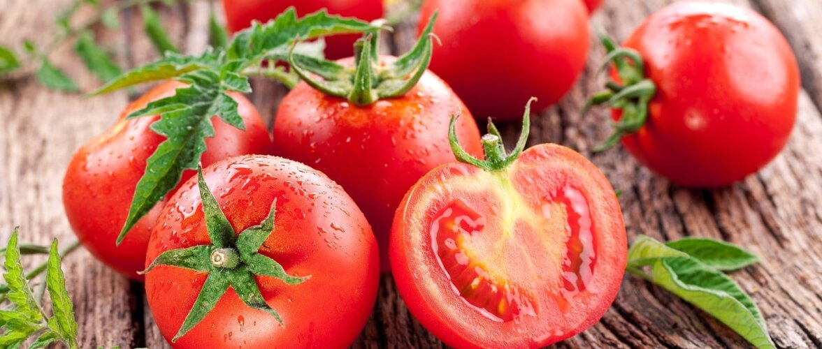 Kodus kasvatatud tomat on parim!