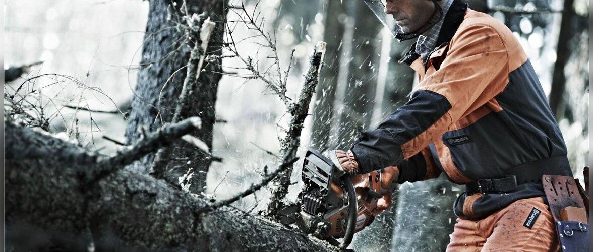 7 nõuannet ohutuks ja tõhusaks puude laasimiseks