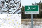 HOMMIKU-UUDISED: kalapüük Pärnu lahes katkestati, Eesti mainekaimaks ettevõtteks peetakse RMKd