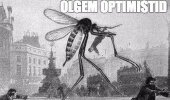 Olgem optimistid