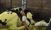 Südantsoojendav KLÕPS | Pilt poisi ja tema lehma puhkehetkest vallutab internetti