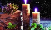 Taimede maagiline vägi: too oma ellu armastust, suurenda vaimseid võimeid ja näe ettekuulutuslikke unenägusid