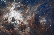 Ученые из США получили новые доказательства существования девятой планеты Солнечной системы