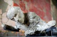 Pompei elanikud toitusid ülitervislikult