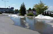 LUGEJA FOTOD: Tartus hakkas lumi sulama!