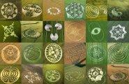 Eksperdid uurivad: viljaringid - mõistatus läbi sajandite