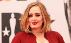 Valus mütakas: Fännile kukkus Adele'i kontserdil lavajupp pähe