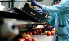 Бельгийский экспорт упал из-за российского продэмбарго