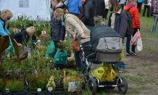 FOTOD: Türile suundub tuhandeid lillelaadalisi