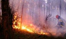 Päästjad võitlevad metsapõlengutega võimete piiril
