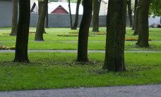Kümme aastat Tartu Päeva pargi saagat on viimaks lõpusirgel