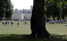Reuters: 15-meetrine tammepuu keset jalgpalliväljakut, mida Ronaldinho teeks?