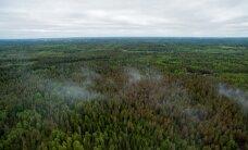ФОТО и ВИДЕО: В Валгамаа продолжается устранение лесного пожара