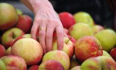 Prantsusmaa ostis Poolalt ära Venemaale mõeldud toidukauba