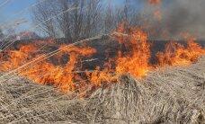Эстонские спасатели потушили пожар в Латвии
