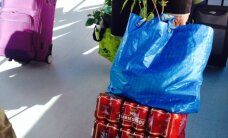 Rootsi pensionär: Türi lillelaadal on meile kõik nii odav!