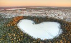 Swedbank investeerib pensioniraha fondi kaudu metsa