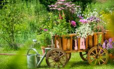 FOTOD: Maalähedane aed võlub mitmekesisusega