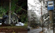 DROONIVIDEO ja FOTOD: Pärnamäe teel hukkus liiklusõnnetuses kolm Viimsi keskkooli abiturienti