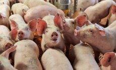 Seakasvatajad tahavad omale lihatööstuse soetada