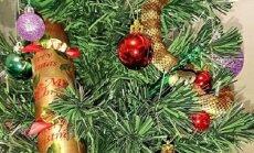 Праздник к нам приходит: ядовитая змея вместо гирлянды на рождественской елке