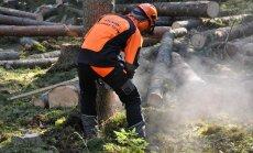 Metsuriks saab õppida Luual. See on töö, mis eeldab pidevat metsas viibimist, head tehnika tundmist, täpsust ja osavustki.
