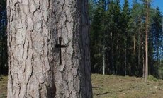 Põlva lähedal hävitati kaks ristimetsa