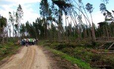 """<a href=""""http://blog.maaleht.ee/leilimetsalood/?p=8642"""" target=""""_blank"""">Leili metsalood: Metsaomanike kokkutulek ja looduse vääramatu jõud</a>"""