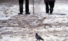 Lumi ja lörts ning purikad Tallinnas