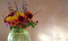 Feng shui nipid: kodus olgu alati lilled — need toovad sulle õnne, armastuse ja pika ea