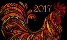 Algas Idamaade uus aasta: mida toob sinu jaoks kaasa punane tulikukk?