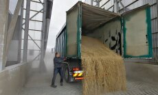 Põllumehel tasub vaadata, kellele ta oma kallilt kätte saadud vilja edasi müüb.