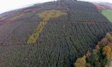 Üle Iirimaa lennates võib näha müstilist vaatepilti: keset metsa kasvab suur keldi rist