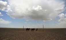 Mongoolia
