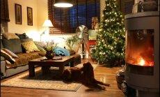 """""""Pühad minu kodus"""": Jõuluaeg on hubane ja soe"""