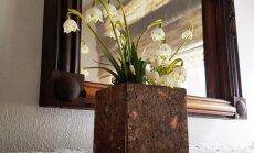 Korgist ümbris sobib ka vaasi või lillepoti kaunistama.
