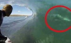 VIDEO, mis võtab ujumise isu ära: need on üheksa maailma kõige eluohtlikumat randa!