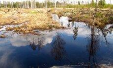 Leili metsalood: Põllul tolmab, metsas uputab