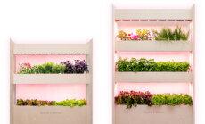Click & Grow tuli turule täiesti uue linnafarmi kontseptsiooniga