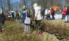 Sigulda taimelaat hakkab kujunema eestlaste ostuparadiisiks.