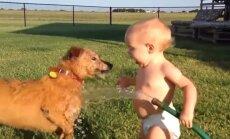 Lustakas VIDEO: Lihtsalt imeline, kuidas beebid ja lemmikloomad koos mängimisest rõõmu tunnevad
