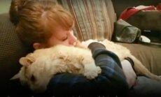 Liigutav lugu: heasüdamlik naine teeb 21-aastase hüljatud ja haige kassi vanaduspäevad rõõmsamaks