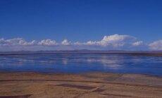 Mis tappis Titicaca järves 10 000 ohustatud liigist konna?