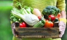 TOP 5: kõige kasulikumad köögiviljad, mida tasuks aias kindlasti kasvatada