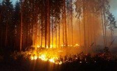 Lõuna-Eesti metsades on äärmiselt suur tuleoht